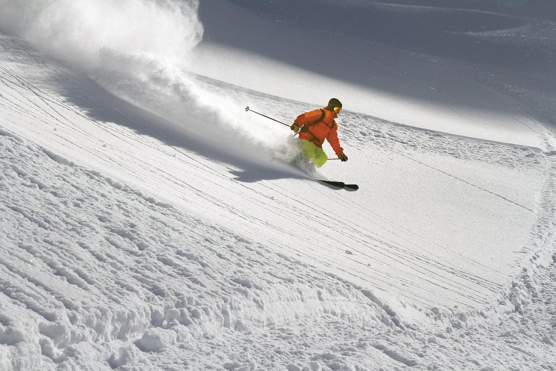 Ski (stock)