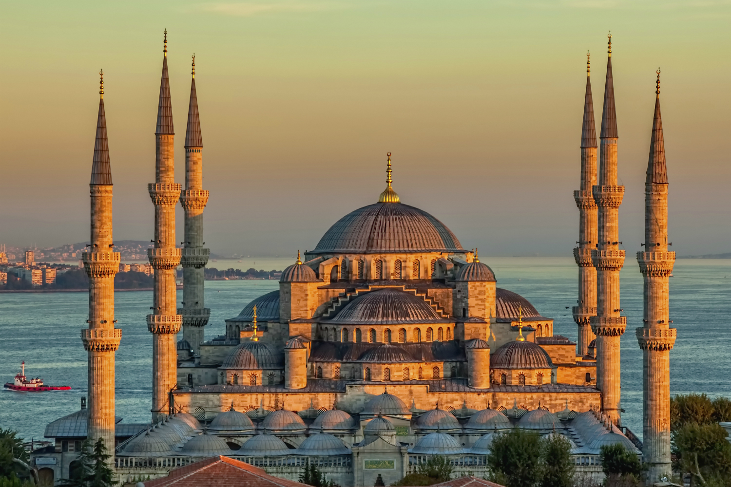 Stewart Travel launches partnership with Turkish Airlines