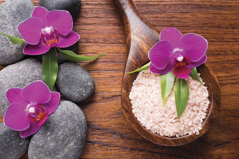 spoon-flower.jpg