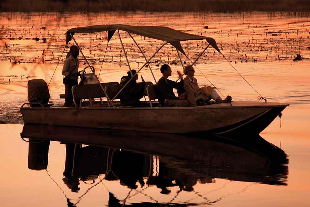 Motorboat safaris