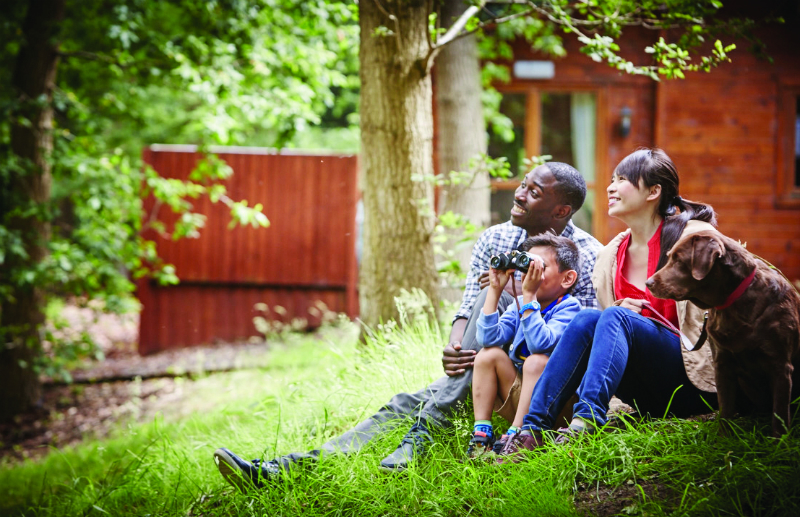 Hoseasons launches affordable woodland breaks