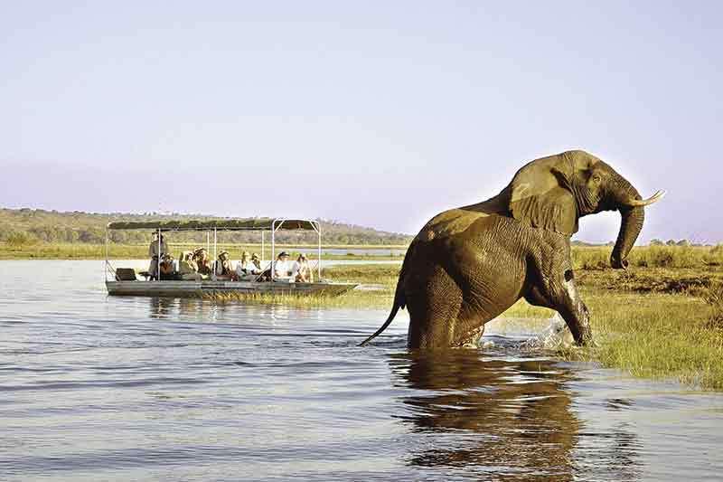Botswana makes Explore's top-five list for 2020