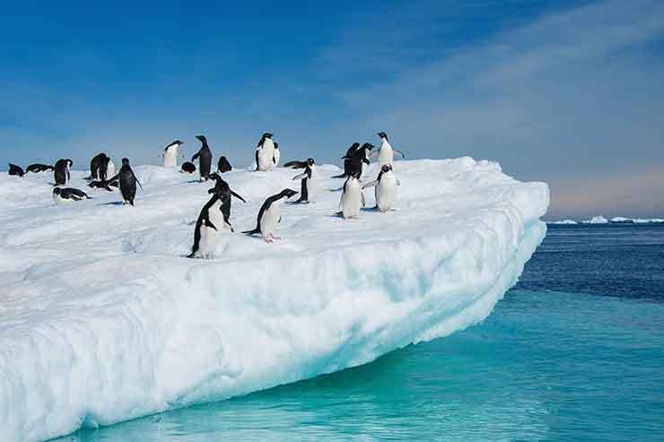 One Ocean Expeditions cancels third Antarctica cruise
