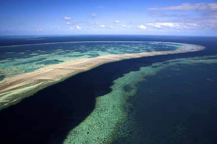 Great Barrier Reef is 'still amazing'