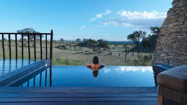 Melia-Serengeti.jpg