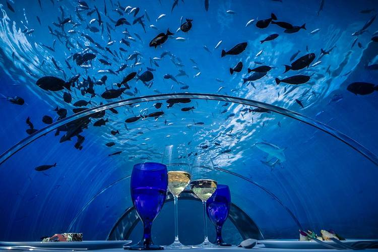 World's largest underwater restaurant coming to the Maldives