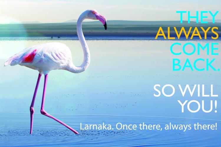 Larnaka Tourism launches flamingo campaign