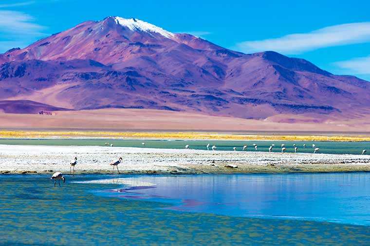 Atacama Desert Wendy Wu Tours.jpg