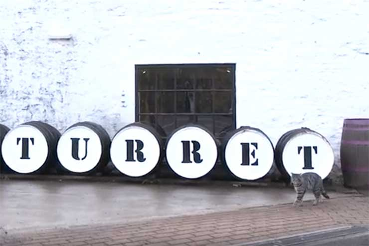 Glenturret Distillery cat goes AWOL