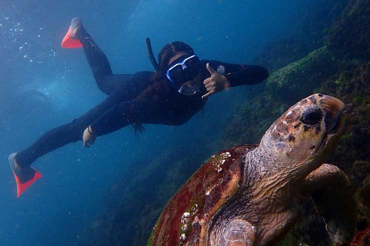 1. Snorkel with turtles at Cook Island
