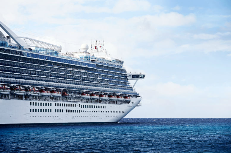 Princess Cruises whistleblower awarded $1 million