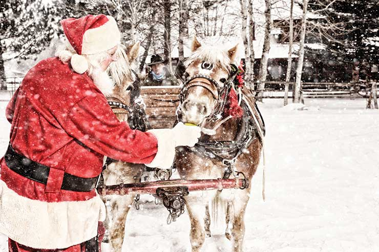 "Lapland bookings made up ""nearly a quarter"" of the agency's sales from 20-27 December"