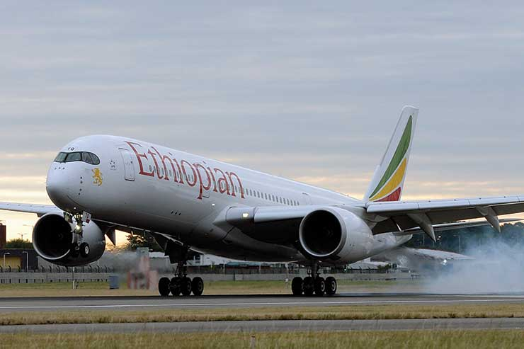 Ethiopian Airlines crash: Seven Britons and one Irish national among dead