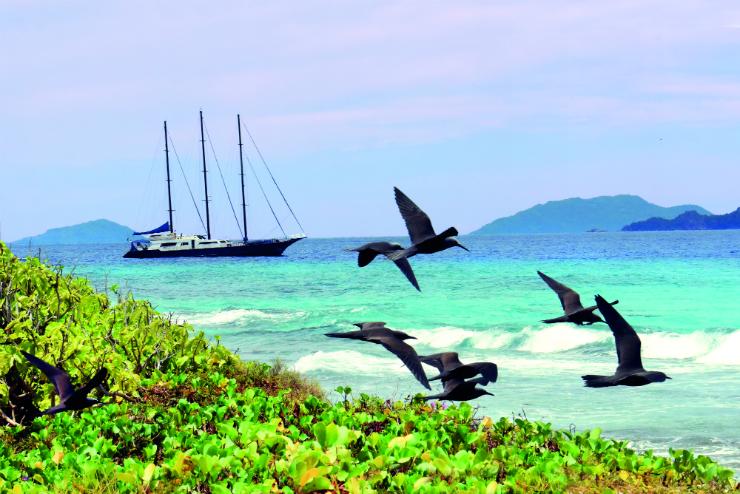 Seychelles – the Royal effect