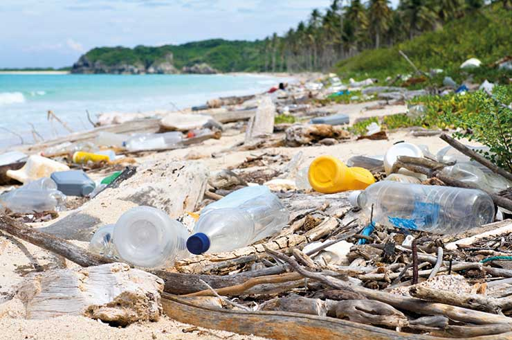 Trash, litter and refuse on the beach