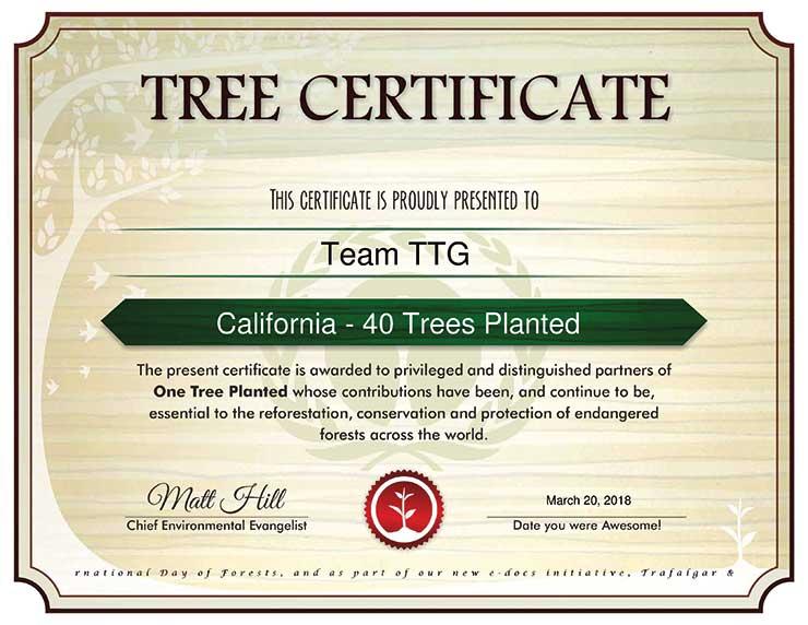 TTG Tree Planting Certificate