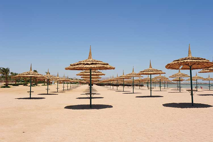 Egyptian beach full of parasols