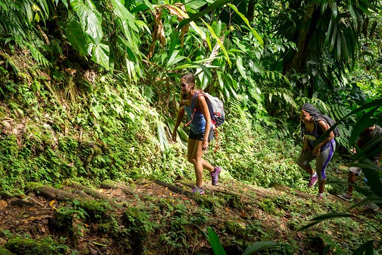 Waitukubuli National Trail, Dominica