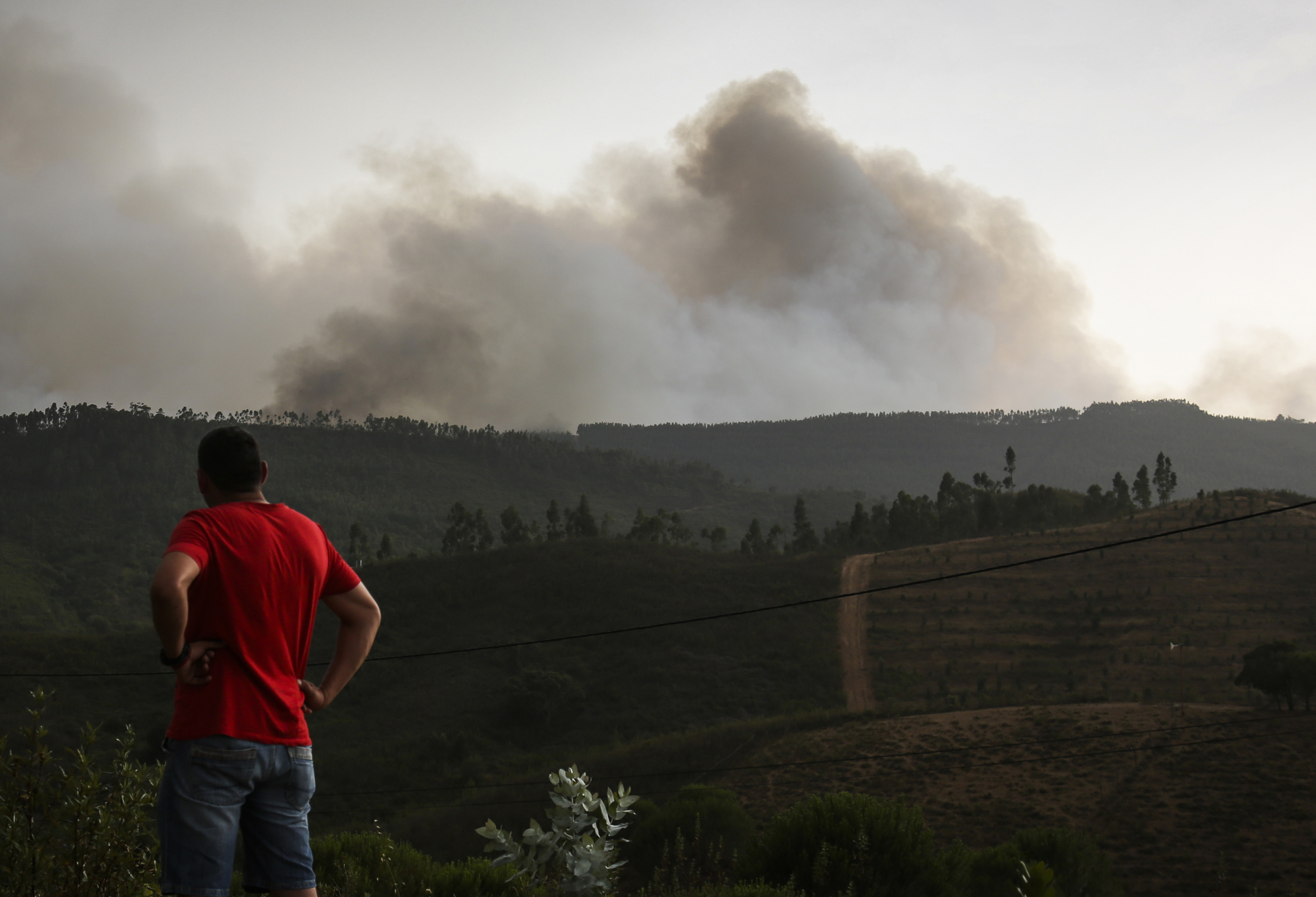 Portugal forest fires spark urgent Foreign Office travel warning