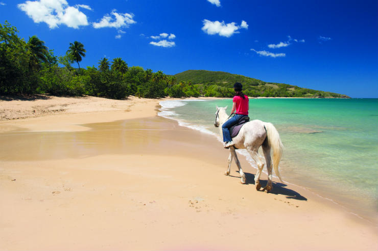 Discovering the French and Dutch Caribbean