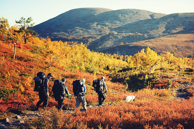 Visit Finland launches new sustainable travel programme