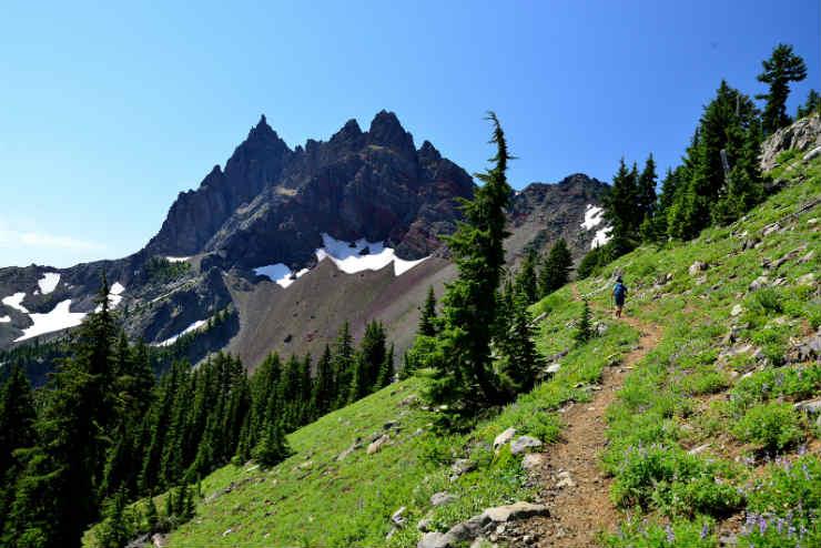 Oregon Hiking.jpg