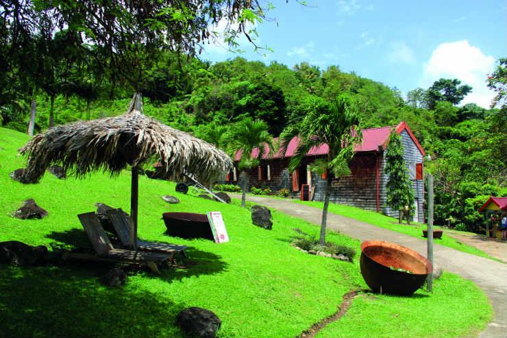 Explore Grenada's culinary culture