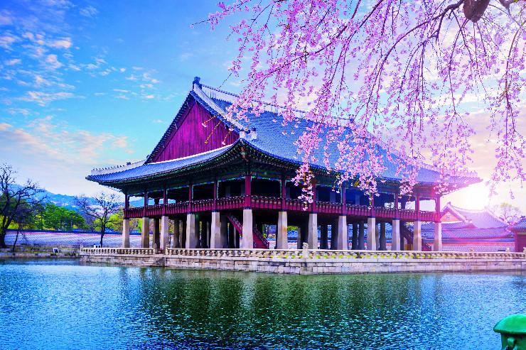 Discovering South Korea