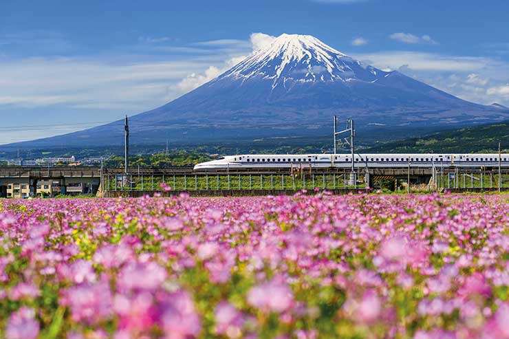 InsideJapan: 'Japan was niche; now it's on everyone's bucket list'
