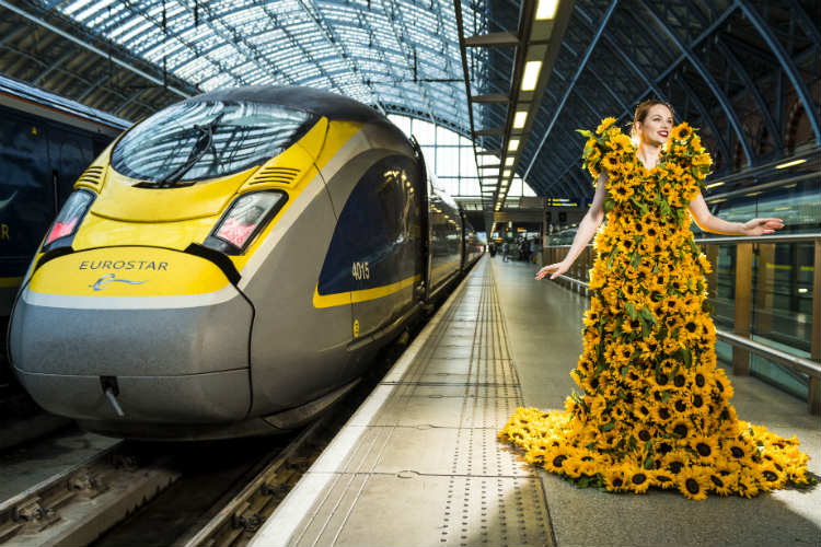 Eurostar Sunflowers