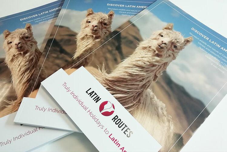 Latin Routes brochure.jpg