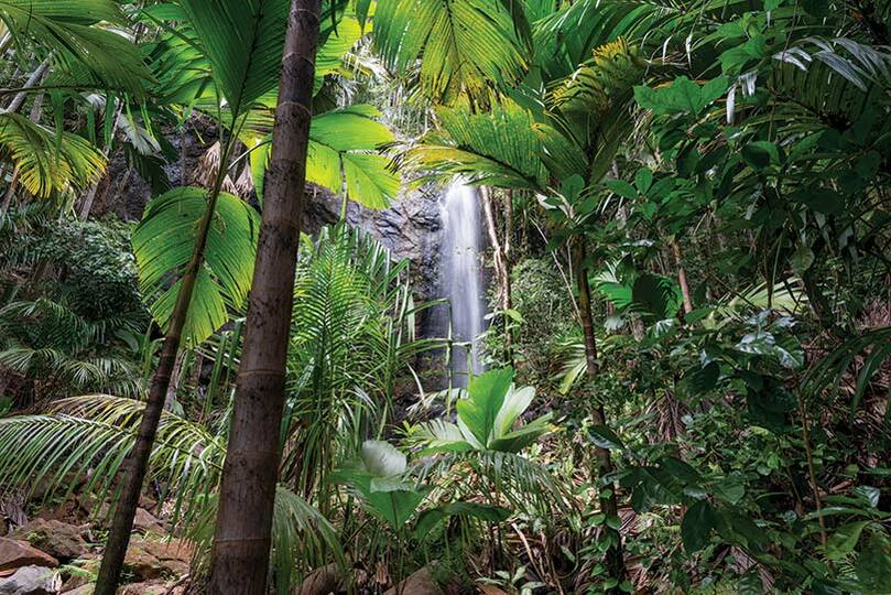 The Seychelles will be in easy reach of West Country travellers