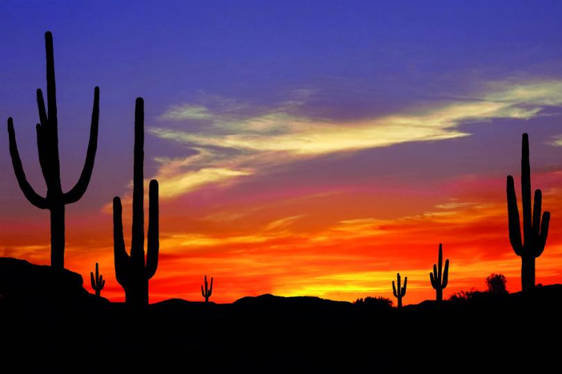 The desert maeks you feel worlds away from city life