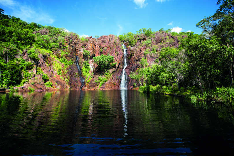 There is an abundance of wildlife in the lakes of the Northern Territory, Australia