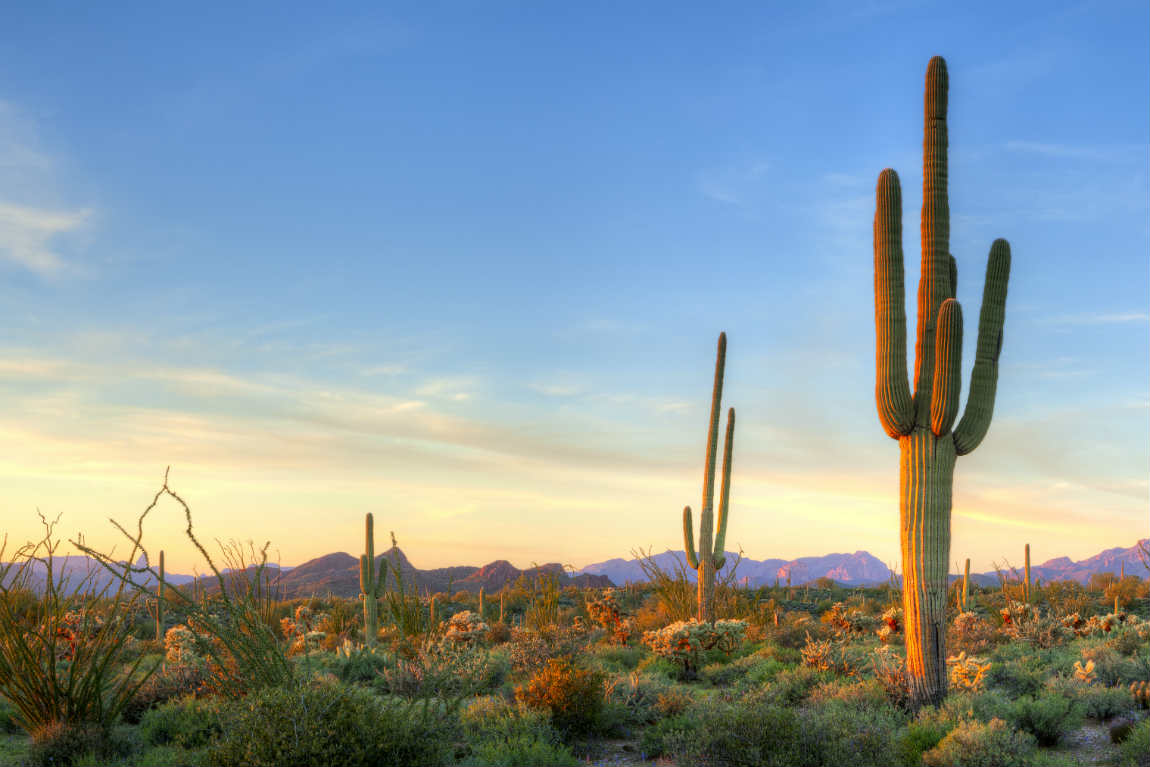 Arizona itself leaves an unforgettable impression