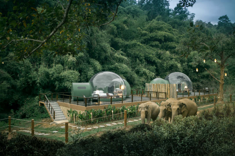 Anantara's Jungle Bubbles are fully air-conditioned