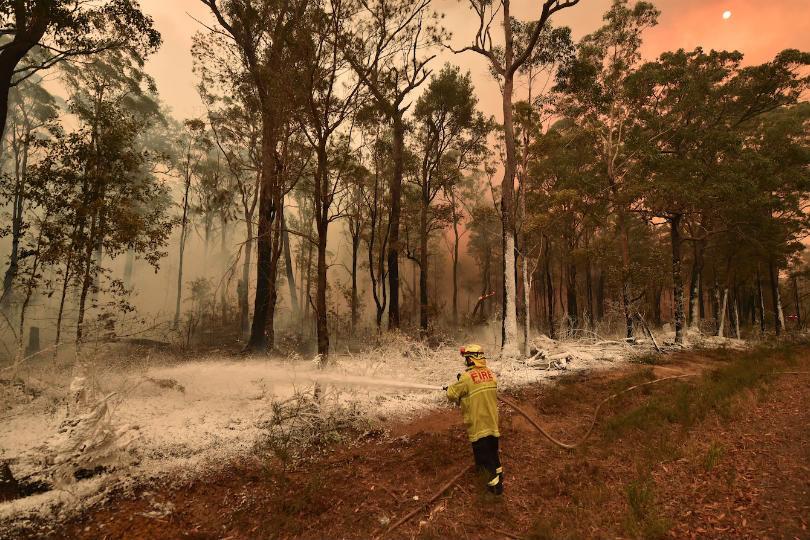 Australia is currently in the midst of a bushfire crisis