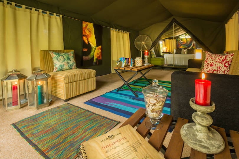 Eco Team's brands offer tented safari experiences among other travel styles