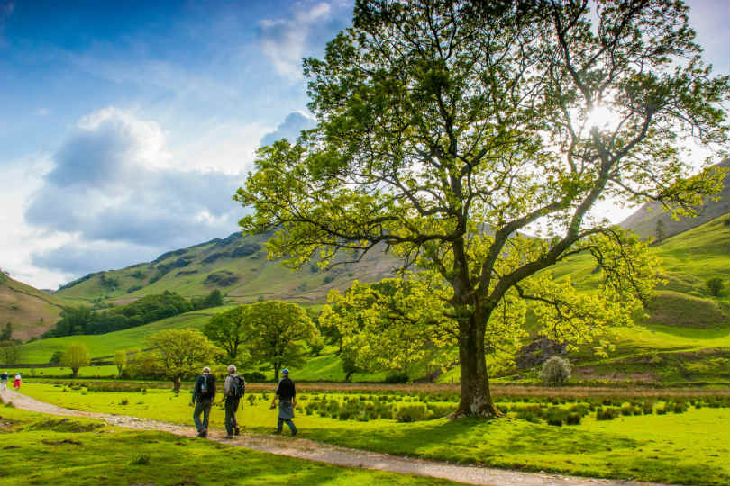 Borrowdale Valley in the Lake District
