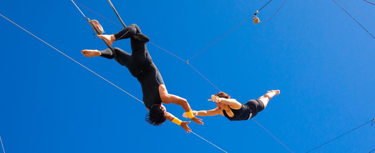 La Plantation d'Albion offers trapeze lessons