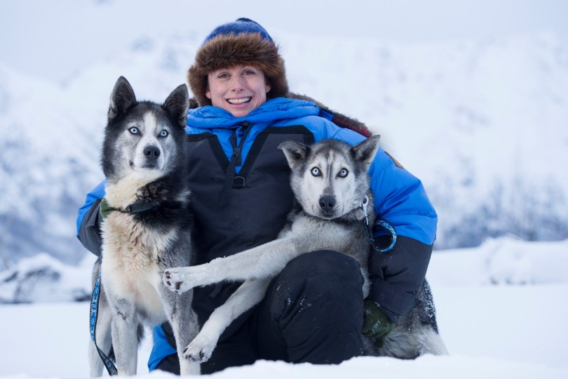 Clients can get to know huskies in Yukon