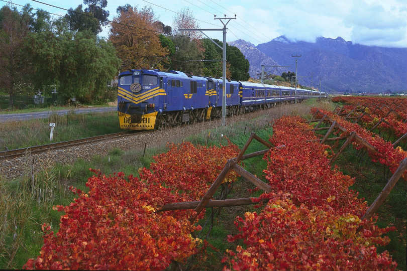 South Africa's Blue Train safari itinerary has been updated