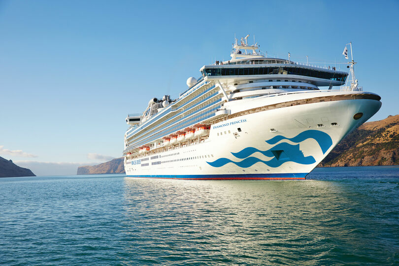 Princess Cruises to suspend sailings for two months