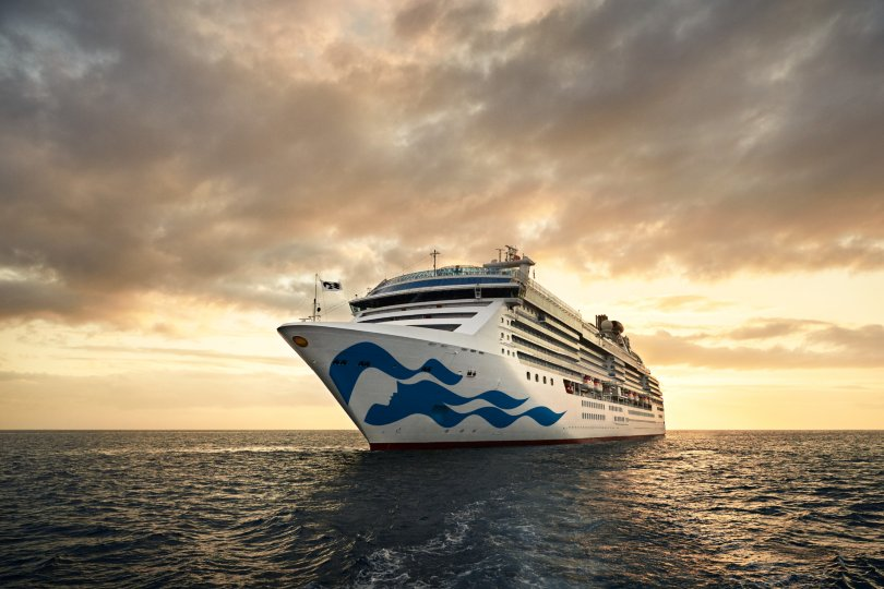 Covid-19 cases confirmed on Princess Cruises ship