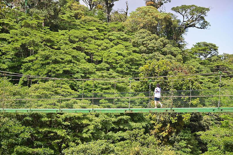 Exploring Monteverde Cloud Forest