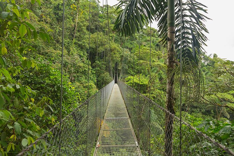Cloud Forest, Costa Rica