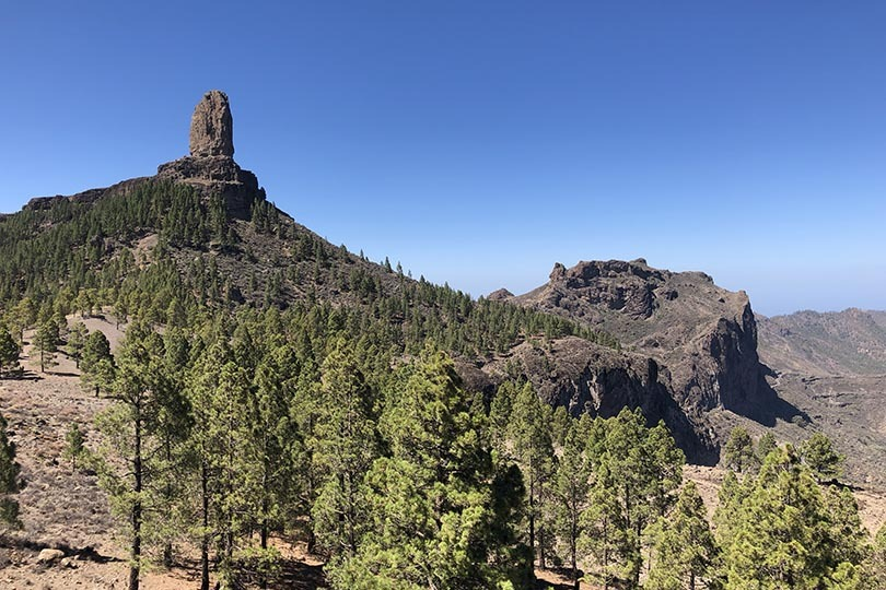 Top 6 Covid-safe activities in Gran Canaria