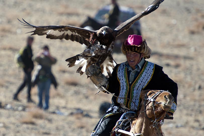 Nomadic Expeditions on funding golden eagle conservation in Mongolia