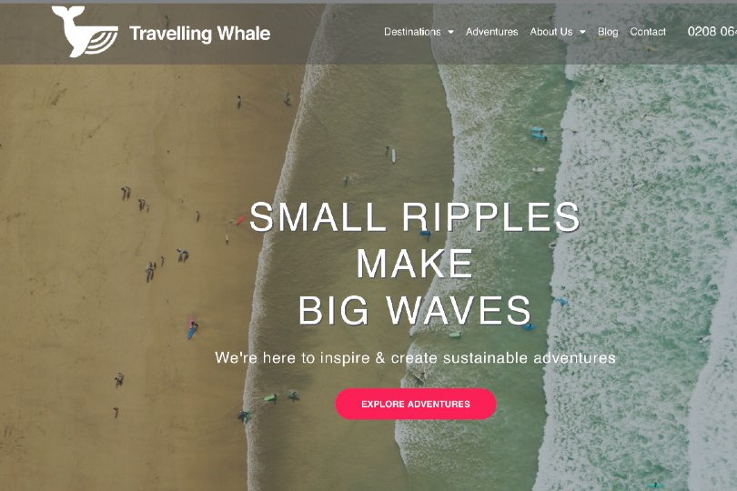 Travelling Whale will be donating 1% of its profits to a wildlife charity