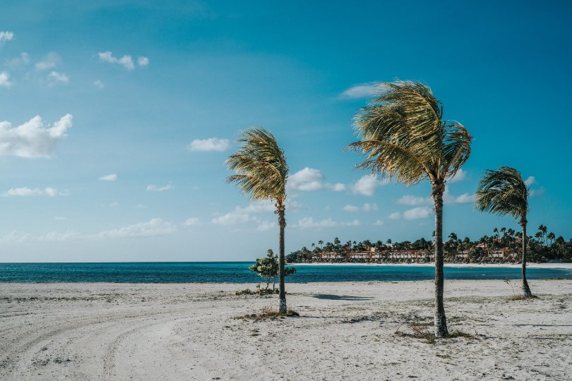 Aruba offers another option in the Caribbean (Credit: David Troeger / Unsplash)